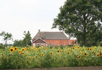 Boerderij-Korenblik