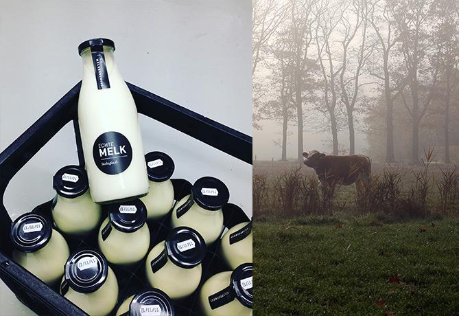De Melkbrouwerij Boerderij Huis in 't Veld-Lettele