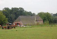 De-Wolfskuil-boerderij